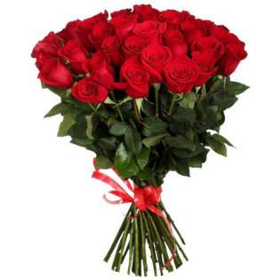 Розы Голландия